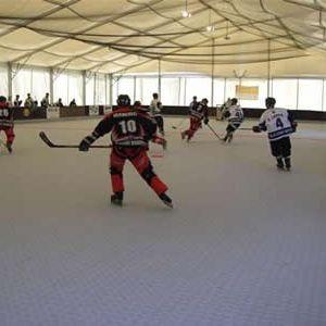Sportdeck® Inline Hockey